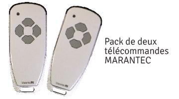 wizeo-porte-garage-lame-detolux-manoeuvre-eletrique